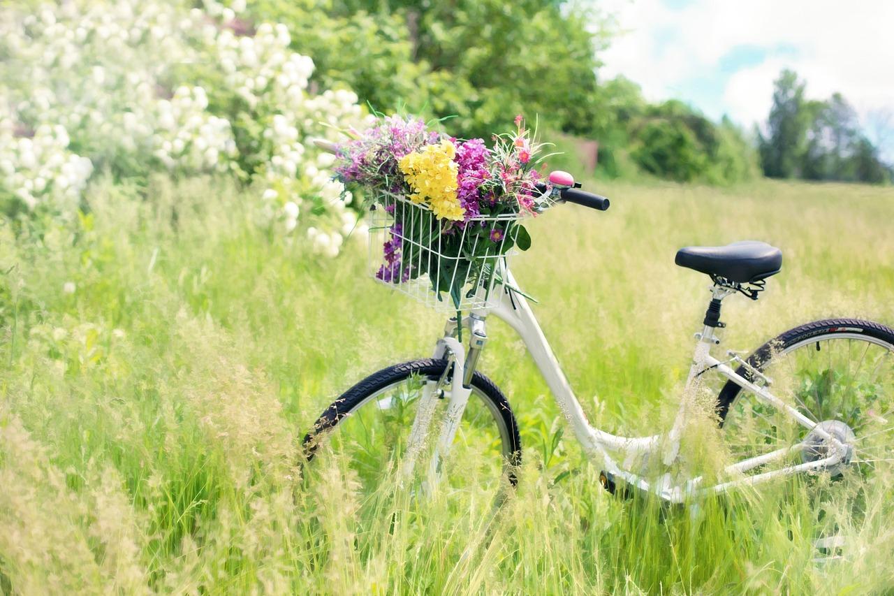 Oferta lombardowa –  skup rowerów, srebra